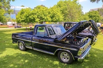 Mustangs In The Park_Stephen Russo 6