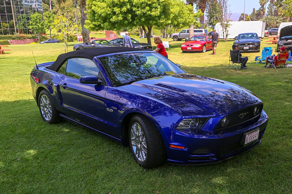 Mustangs In The Park_Stephen Russo 65