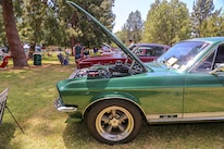Mustangs In The Park_Stephen Russo 66