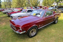 Mustangs In The Park_Stephen Russo 67