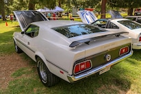 Mustangs In The Park_Stephen Russo 75