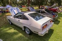Mustangs In The Park_Stephen Russo 76