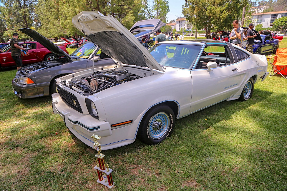 Mustangs In The Park_Stephen Russo 78
