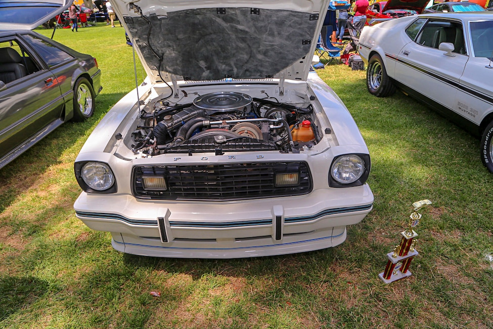 Mustangs In The Park_Stephen Russo 79
