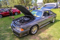 Mustangs In The Park_Stephen Russo 80