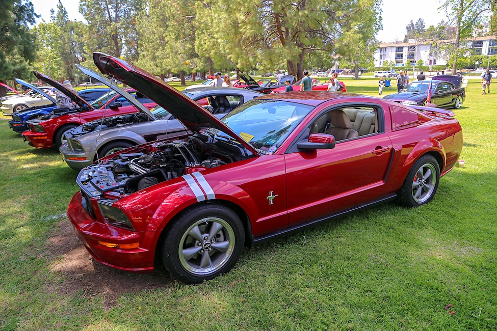Mustangs In The Park_Stephen Russo 81